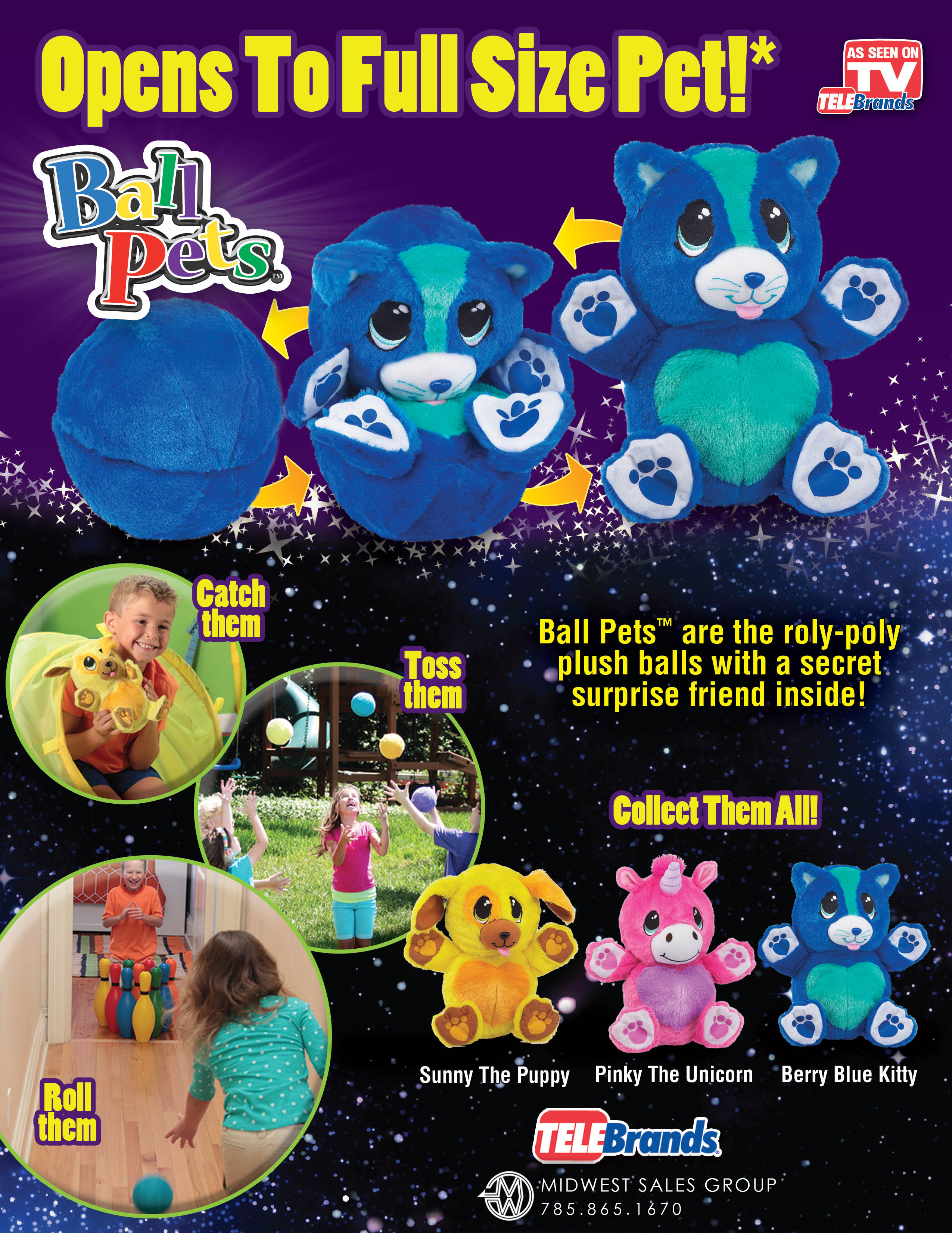 Ball Pets Sell Sheet_r2_EMBED_hires